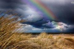- regenbogen -