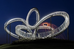 Tiger & Turtle 05