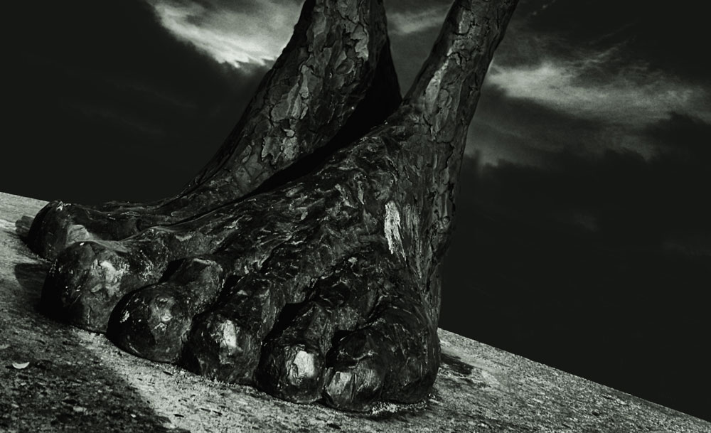 - Bigfoot -