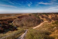 - Dünenlandschaft -