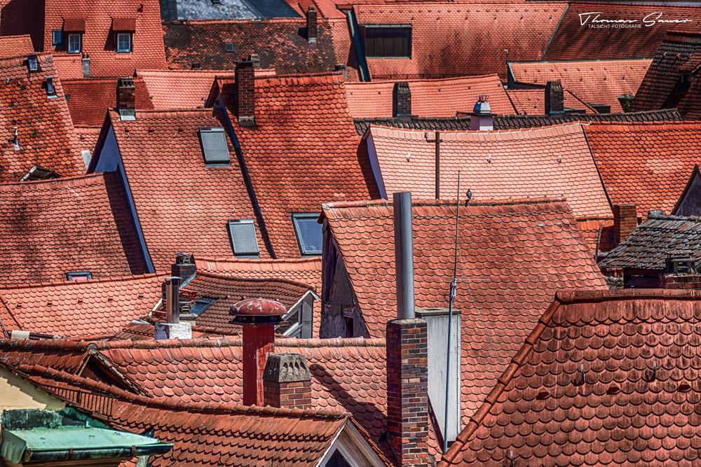 - Bamberg 2019 #05 -